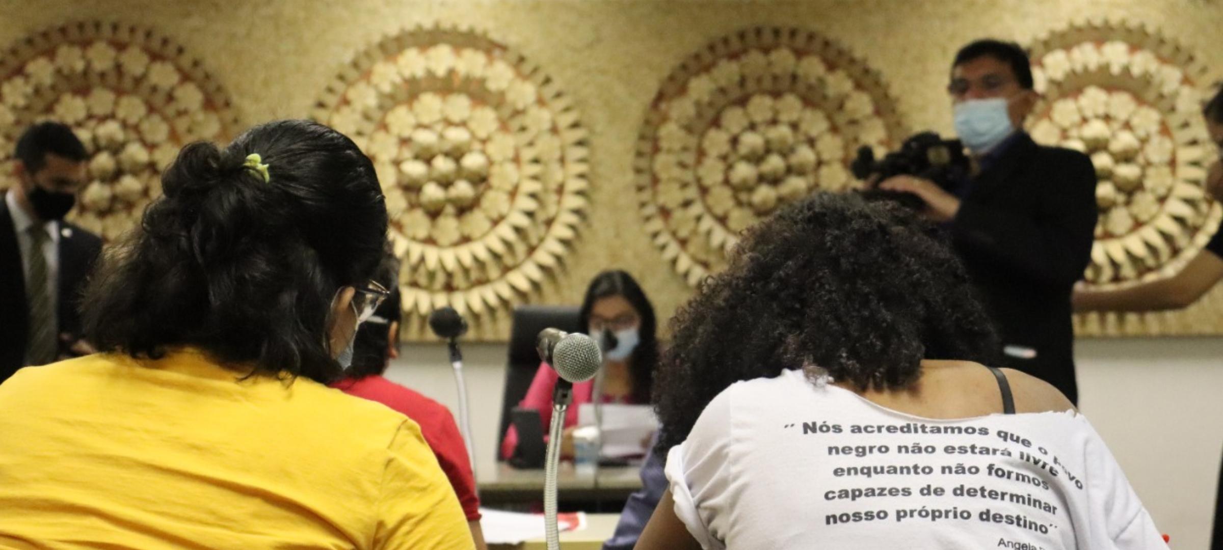 ADCESP propõe emenda ao PLOG 25 e retirada de pauta do PLOG 21 durante Audiência Pública na ALEPI